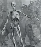 Illustration of skeleton in pastoral scene with rhino