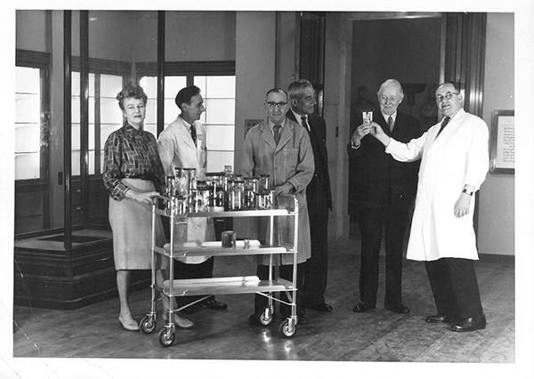 Museum staff placing the first specimens in the new museum in June 1960