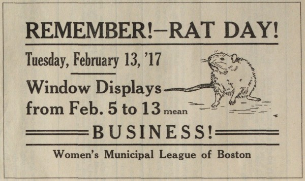 Window display for Boston Rat Day: Remember! Rat Day! Tuesday, February 13, '17, Window Displays from Feb.5 to 13 mean BUSINESS! Women's Municipal League of Boston