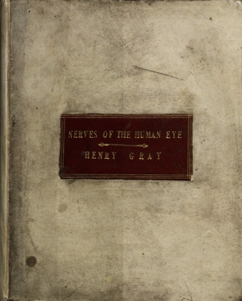 The front cover of Henry Gray's Nerves of the Human Eye