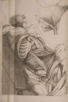 Charles Bell - A system of dissections 1799
